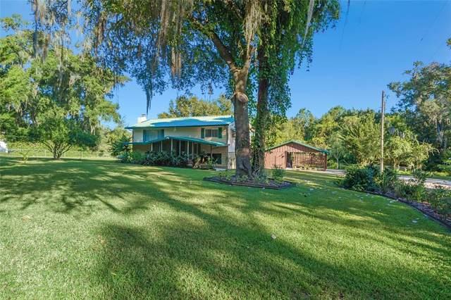 20431 Pinewood Dairy Road, Brooksville, FL 34601 (MLS #T3334748) :: Delgado Home Team at Keller Williams