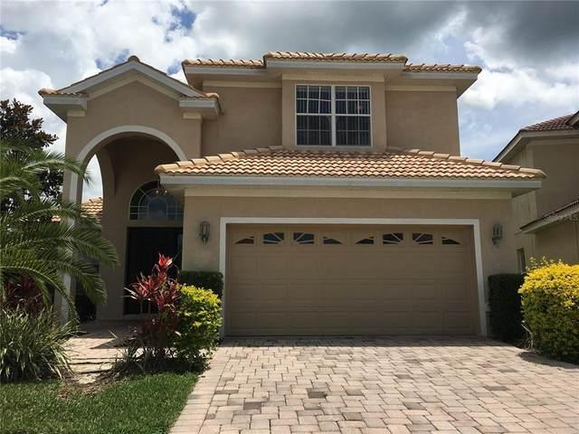 18047 Java Isle Drive, Tampa, FL 33647 (MLS #T3334772) :: Team Bohannon