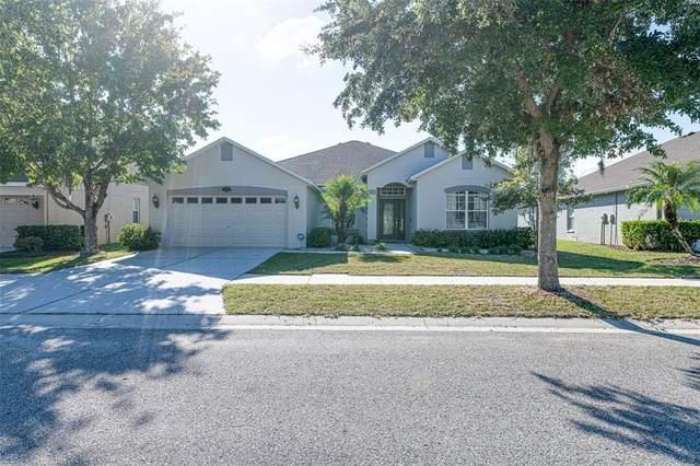 10804 Breaking Rocks Drive, Tampa, FL 33647 (MLS #T3334778) :: Cartwright Realty