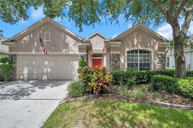 10224 Evergreen Hill Drive, Tampa, FL 33647 (MLS #T3334866) :: Orlando Homes Finder Team