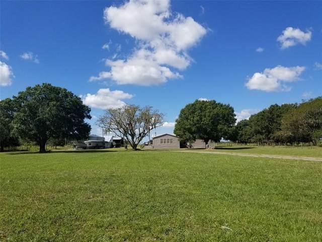 15201 Mcgrady Road, Wimauma, FL 33598 (MLS #T3334869) :: Medway Realty