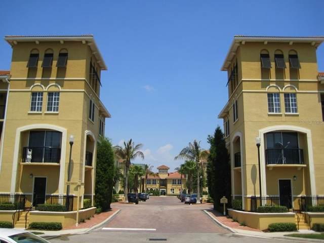 101 Beach Haven Lane, Tampa, FL 33609 (MLS #T3334880) :: The Heidi Schrock Team