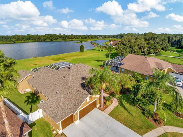 5516 Winding Brook Lane, Valrico, FL 33596 (MLS #T3334888) :: Griffin Group