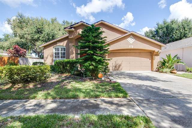 718 Somerstone Drive, Valrico, FL 33594 (MLS #T3334900) :: Everlane Realty