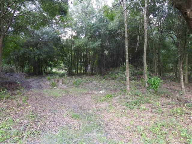 1123 Saddlewood Boulevard, Lakeland, FL 33809 (MLS #T3334918) :: Florida Real Estate Sellers at Keller Williams Realty