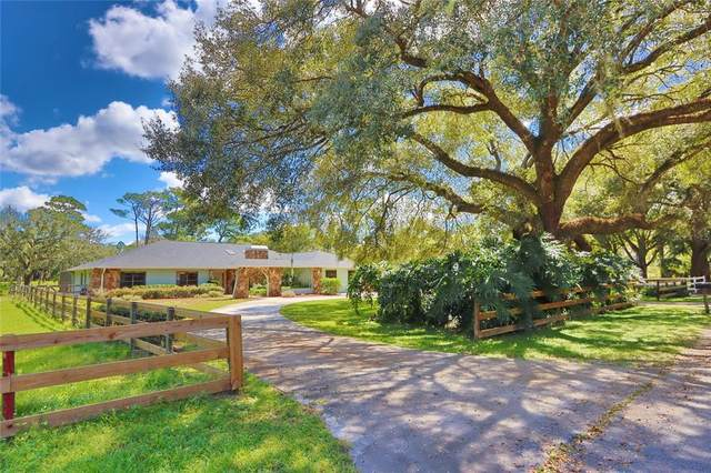 18523 30TH Street, Lutz, FL 33559 (MLS #T3334922) :: Rabell Realty Group
