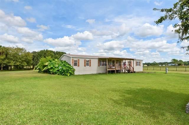 14850 Angus Road, Polk City, FL 33868 (MLS #T3334932) :: Global Properties Realty & Investments