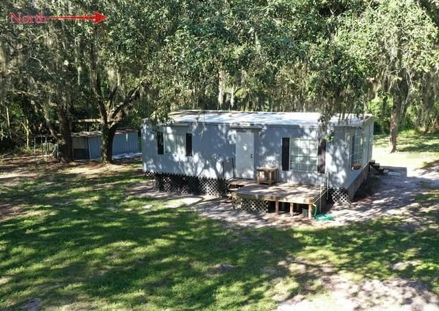 14918 Carlton Lake Road, Wimauma, FL 33598 (MLS #T3334957) :: Medway Realty