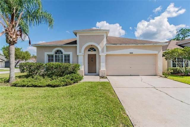 14449 Pepperpine Drive, Tampa, FL 33626 (MLS #T3334967) :: Cartwright Realty