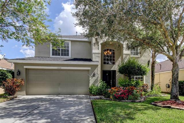 11226 Cypress Reserve Drive, Tampa, FL 33626 (MLS #T3335008) :: Griffin Group