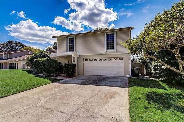 4112 Dellbrook Drive, Tampa, FL 33624 (MLS #T3335055) :: Burwell Real Estate