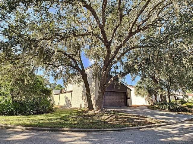 7526 Santa Fe Trail, Hudson, FL 34667 (MLS #T3335063) :: Global Properties Realty & Investments