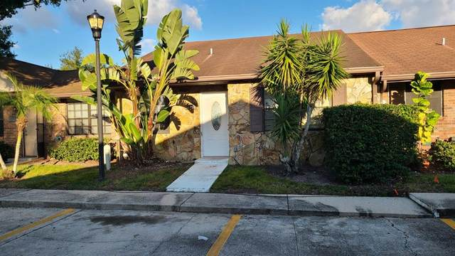 6317 Morning Sun Place, Tampa, FL 33614 (MLS #T3335111) :: SunCoast Home Experts
