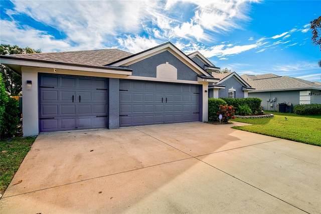 419 Carriage House Lane, Tarpon Springs, FL 34688 (MLS #T3335160) :: Medway Realty