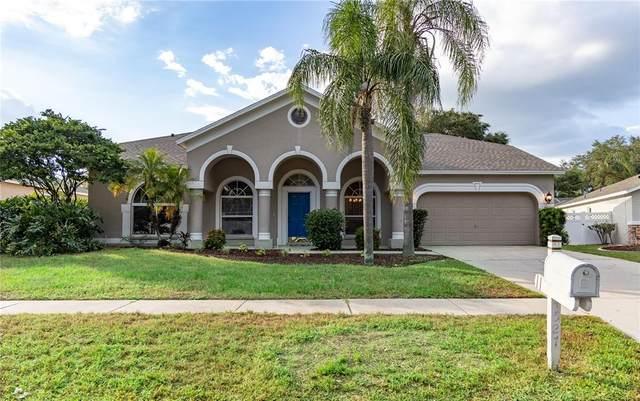 4527 Gentrice Drive, Valrico, FL 33596 (MLS #T3335165) :: Everlane Realty