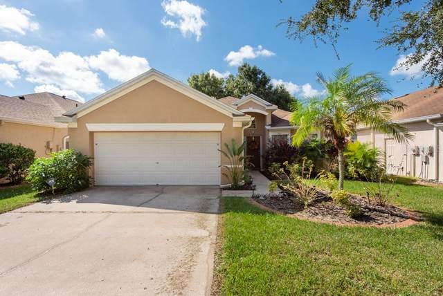 4759 Whispering Wind Avenue, Tampa, FL 33614 (MLS #T3335197) :: Global Properties Realty & Investments
