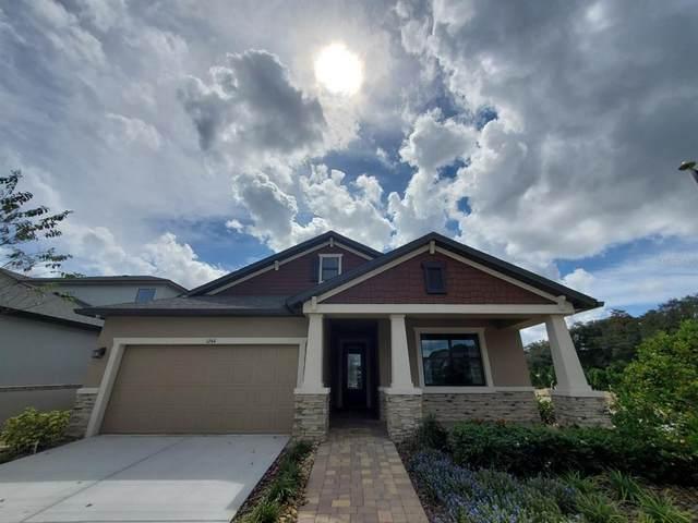 1244 Florablu Drive, Seffner, FL 33584 (MLS #T3335205) :: Medway Realty
