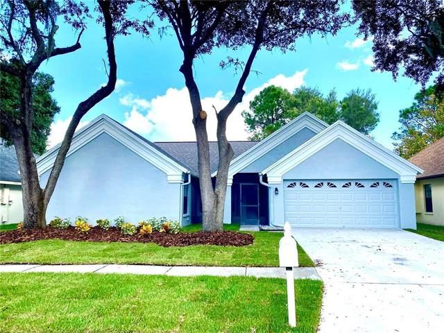18213 Cypress Stand Circle, Tampa, FL 33647 (MLS #T3335240) :: Cartwright Realty