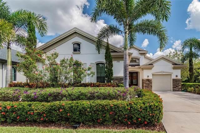 230 Lesley Lane, Oldsmar, FL 34677 (#T3335244) :: Caine Luxury Team