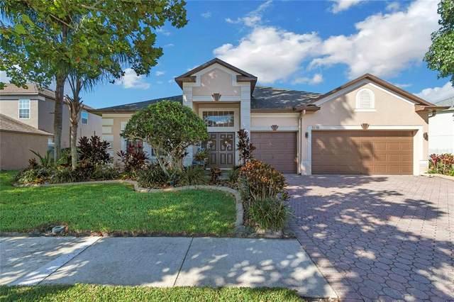 5118 Hartwell Loop, Land O Lakes, FL 34638 (MLS #T3335266) :: Everlane Realty