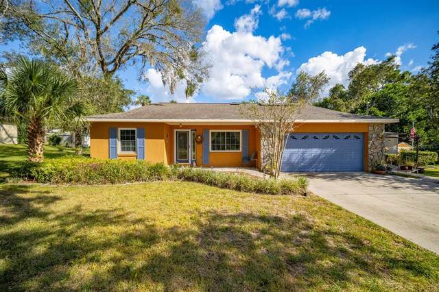 5970 W Cinnamon Ridge Drive, Homosassa, FL 34448 (MLS #T3335272) :: Global Properties Realty & Investments