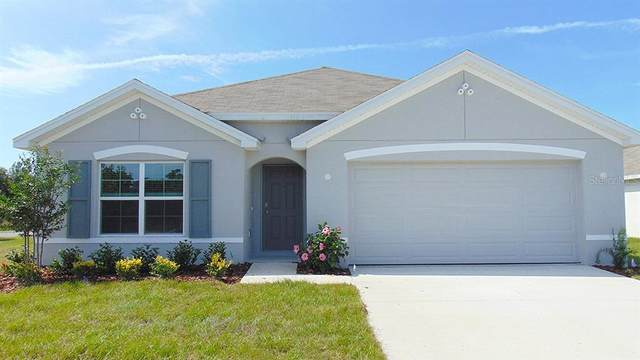 6509 SE 4TH Lane, Ocala, FL 34472 (MLS #T3335289) :: Charles Rutenberg Realty