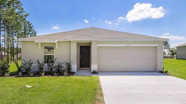 5150 Diantha Way, Brooksville, FL 34604 (#T3335310) :: Caine Luxury Team