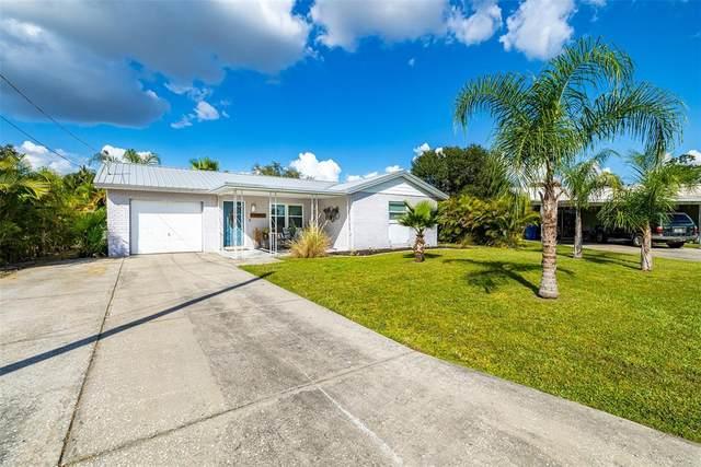501 Firefly Lane, Apollo Beach, FL 33572 (MLS #T3335340) :: Charles Rutenberg Realty
