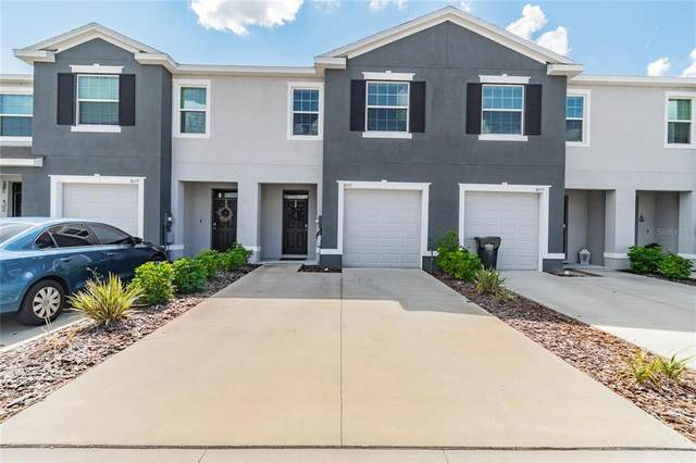8657 Falling Blue Place, Riverview, FL 33578 (MLS #T3335369) :: Keller Williams Suncoast