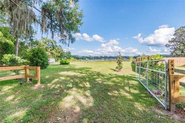 1230 Livingston Road, Lutz, FL 33559 (MLS #T3335371) :: Everlane Realty