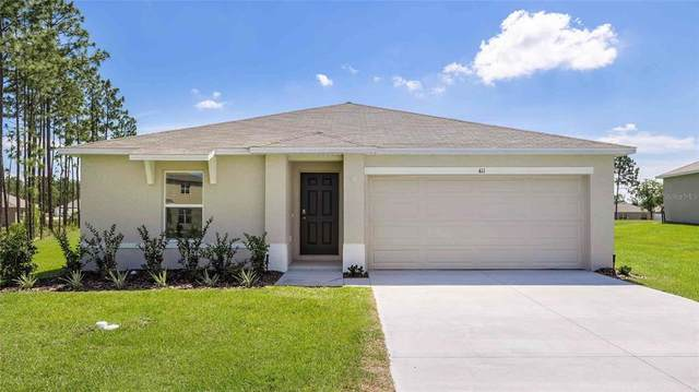 19186 NW 164TH Place, High Springs, FL 32643 (MLS #T3335414) :: Rabell Realty Group