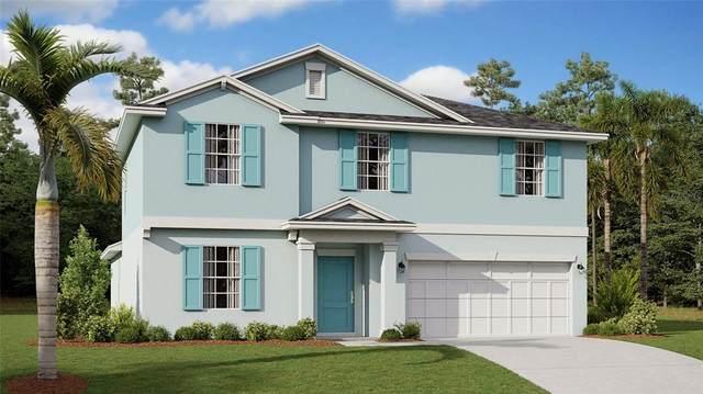 276 Pineywoods Street, Saint Cloud, FL 34772 (MLS #T3335423) :: The Light Team