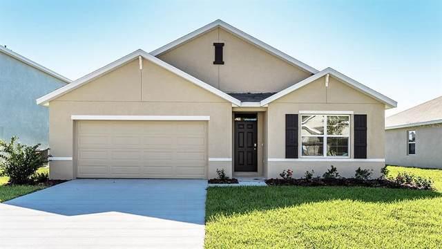 8622 Triumph Circle, Wildwood, FL 34785 (MLS #T3335424) :: Everlane Realty
