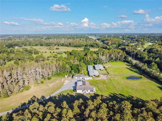 16811 Whirley Road, Lutz, FL 33558 (MLS #T3335452) :: Griffin Group