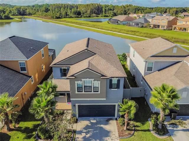 1523 Ludington Avenue, Wesley Chapel, FL 33543 (MLS #T3335493) :: Baird Realty Group