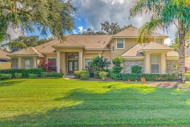 3412 Sylvan Shadow Street, Valrico, FL 33596 (MLS #T3335494) :: Griffin Group