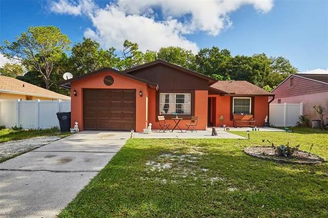 16009 Sharewood Drive, Tampa, FL 33618 (MLS #T3335495) :: Cartwright Realty