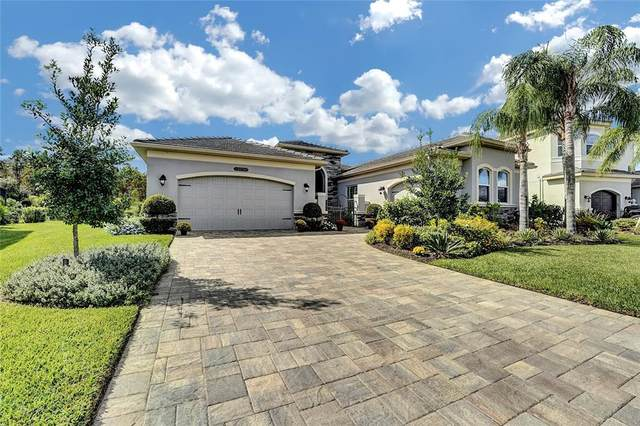 2273 Hollow Forest Court, Wesley Chapel, FL 33543 (MLS #T3335506) :: Global Properties Realty & Investments