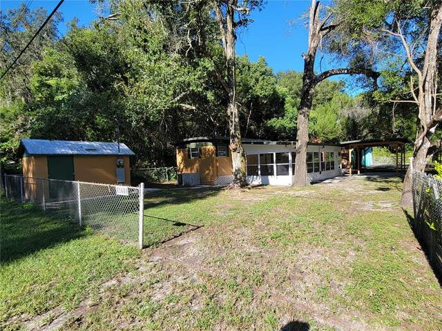 16717 Petras Lane, Spring Hill, FL 34610 (MLS #T3335516) :: Global Properties Realty & Investments