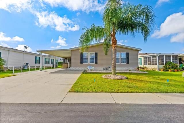 37538 Corey Lewis Avenue, Zephyrhills, FL 33541 (MLS #T3335528) :: Rabell Realty Group