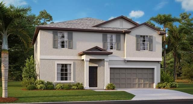 1685 Blue Rose Drive, Ruskin, FL 33570 (MLS #T3335534) :: Everlane Realty