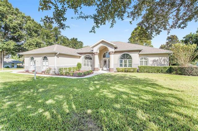 615 N Cherry Pop Drive, Inverness, FL 34453 (MLS #T3335543) :: Global Properties Realty & Investments
