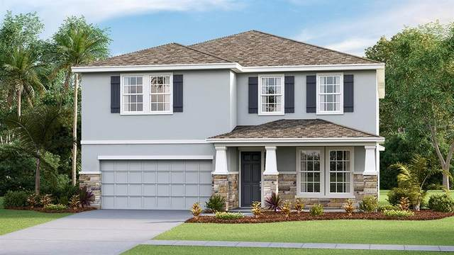 5357 Thistle Field Court, Wesley Chapel, FL 33545 (MLS #T3335548) :: Cartwright Realty