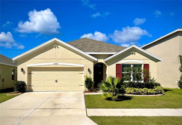 12009 Gillingham Harbor Lane, Gibsonton, FL 33534 (MLS #T3335557) :: RE/MAX LEGACY