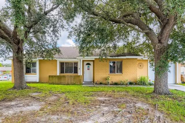 165 Merida Drive, Kissimmee, FL 34743 (MLS #T3335561) :: RE/MAX LEGACY