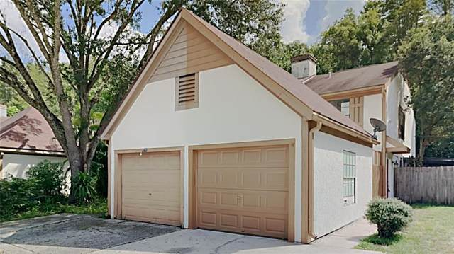 16124 Dawnview Drive, Tampa, FL 33624 (MLS #T3335563) :: Visionary Properties Inc