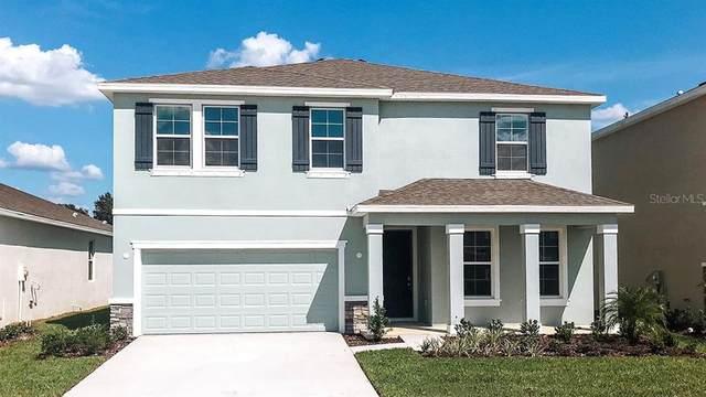 13649 NW 14TH Place, Newberry, FL 32669 (MLS #T3335579) :: Pristine Properties