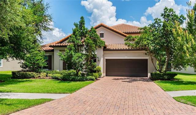 1107 Isobel Reserve Lane, Tampa, FL 33613 (MLS #T3335605) :: The Heidi Schrock Team