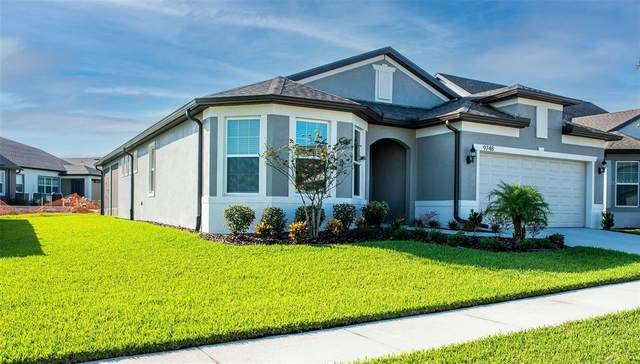 9748 Ibis Grove Boulevard, Wesley Chapel, FL 33545 (MLS #T3335641) :: Cartwright Realty