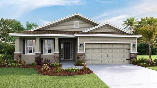 5831 Silver Palm Boulevard, Lakewood Ranch, FL 34211 (MLS #T3335653) :: Team Turner